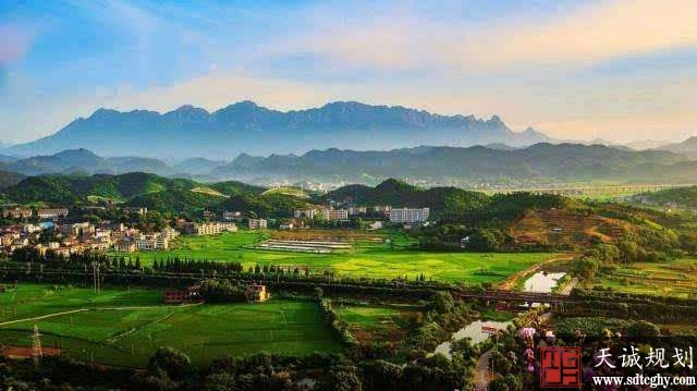 河南探索特色乡村振兴之路 推动农业强 农村美 农民富