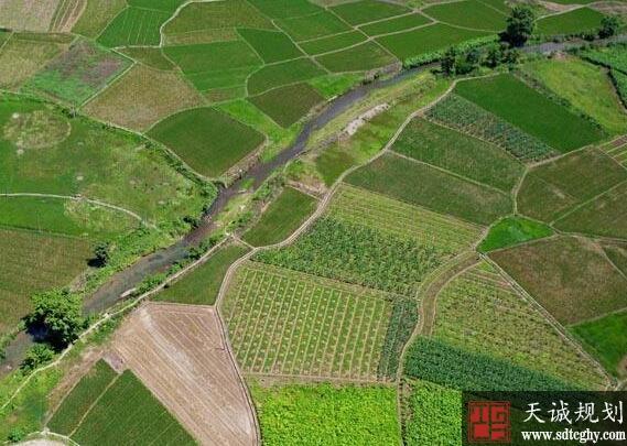 农行河池分行加大农土地整治贷款投放力度加快农业健康发展