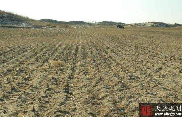 济南印发《通知》建立农村闲散土地数据库并用三年盘活