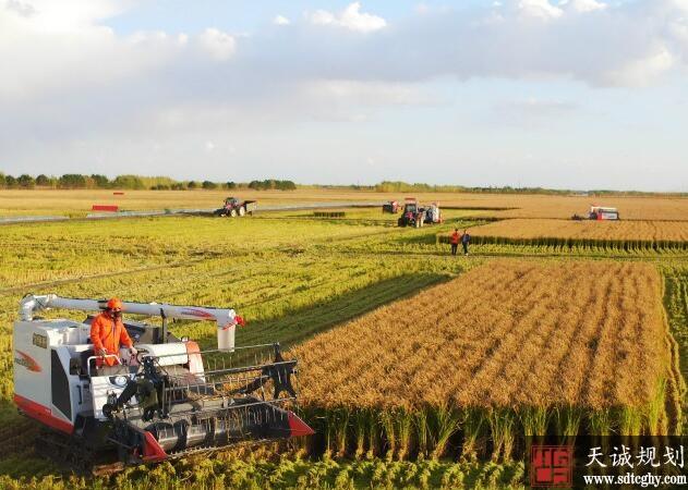 三江平原灌区区域性重要农田水利工程正式启动