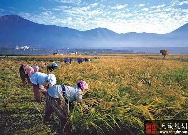 不得以退出土地承包权为农民进城落户条件