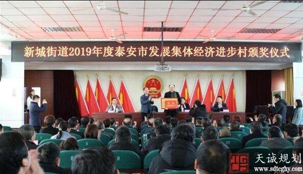 泰安市评选并奖励发展集体经济进步村