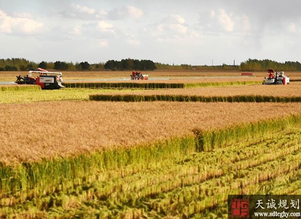 泰州49家家庭农场被列入省级示范家庭农场名单