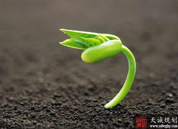 济南提出土壤污染防治新要求紧盯双'90%'目标