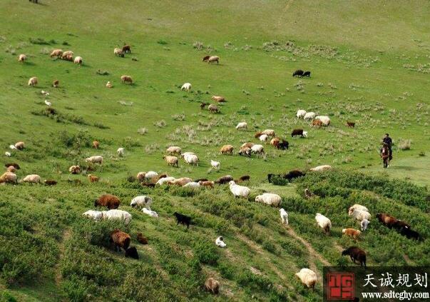 土地流转将农民从土地解放出来实现多渠道收入致富