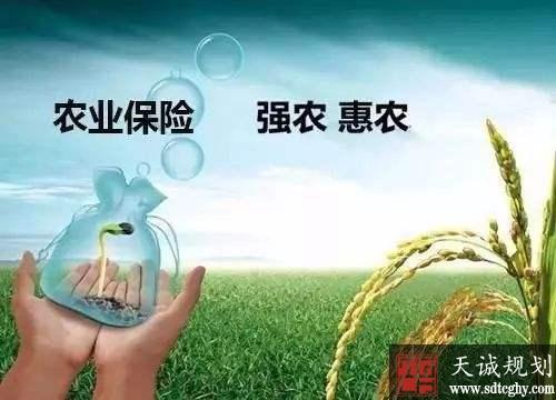 完善农业保险政策 建立多层次农业保险体系