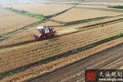农用地转为建设用地需要办理哪些审批手续?