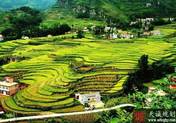 陕西分行五年内授信1000亿元推进乡村战略实施
