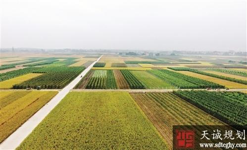 肇庆市多措并举提升土地利用效能并取得实效