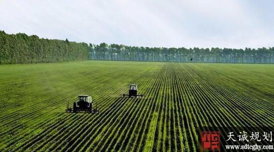 发改委下达中央预算内投资165亿元支持高标准农田建设
