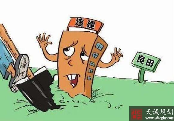 南乐县多措并举整治农村乱占耕地建房问题