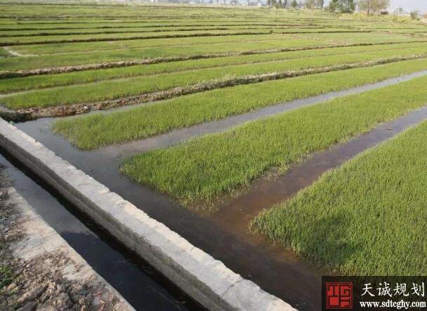 重点围绕水利、农业等领域抓好基础设施建设