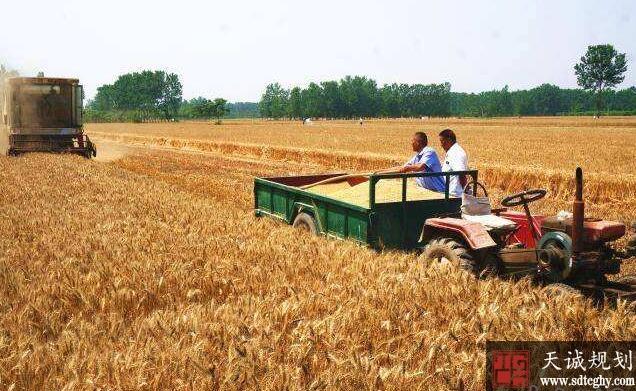 我国首个升级耕地破坏鉴定地方标准在河南发布