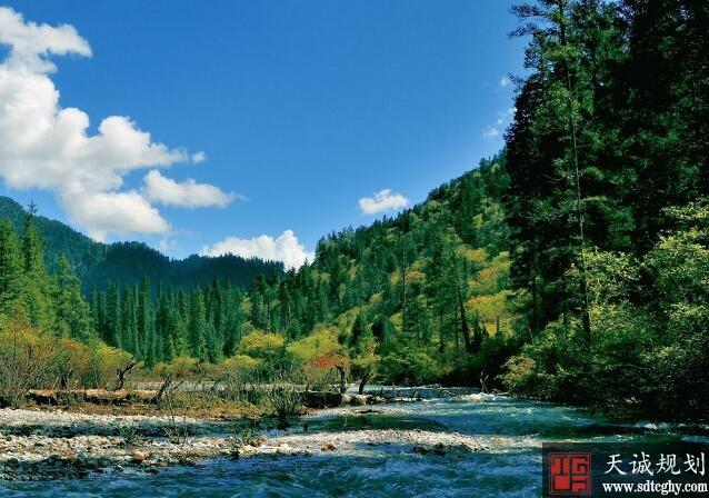 """自然资源部联合11家公益组织发起""""自然保护公益伙伴计划"""""""