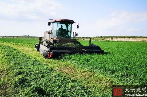农土地流转带领内蒙农民走上脱贫致富路
