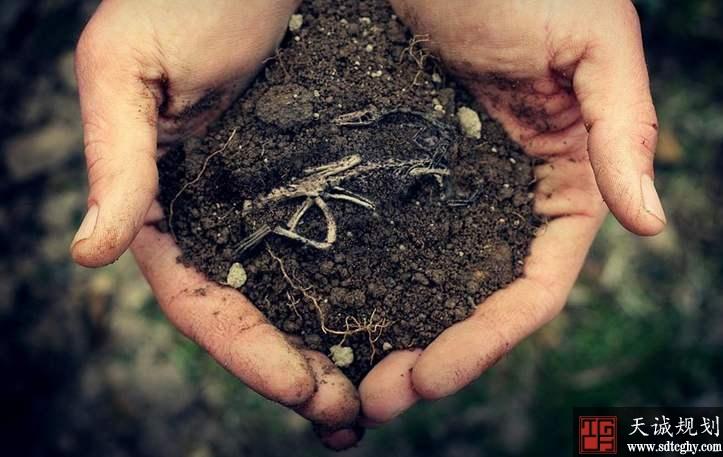 江西:土壤严重污染将拟最高罚款200万元