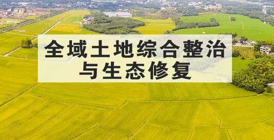 安陆市四坚持推进全域国土综合整治工作