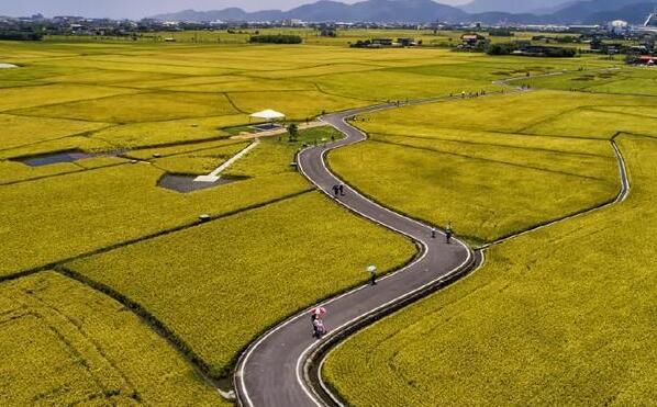 天峨县加大对农田水利基本建设的投入助农丰收